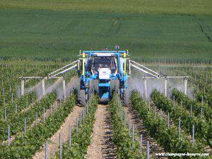 Le calendrier du vigneron winestory - Traitement de la vigne ...