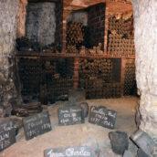 Dégustation Jasnières et Coteaux du Vendomois