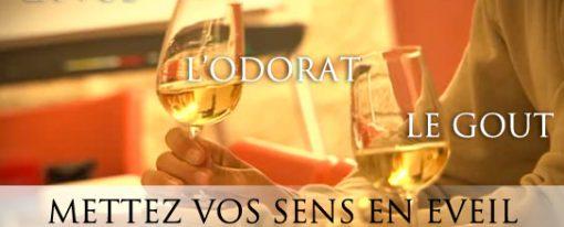 Initiation les arômes parfumés du vin le 10 février
