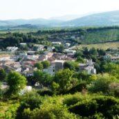 Dégustation Languedoc