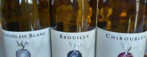 Commentaires dégustation Beaujolais, domaine Dominique Piron